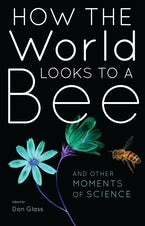 How the World Looks to a Bee