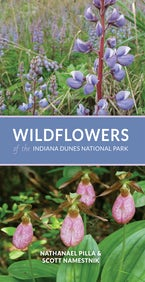 Wildflowers of the Indiana Dunes National Park